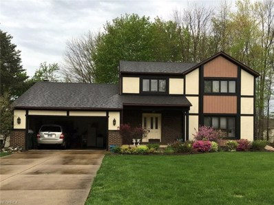 6051 Castlehill Dr, Highland Heights, OH 44143 - MLS#: 3977977