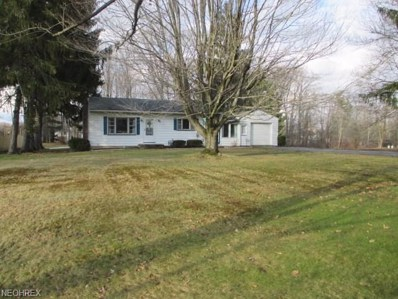 3742 Shields Rd, Canfield, OH 44406 - MLS#: 3978807