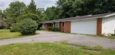 7503 Chillicothe Rd, Mentor, OH 44060 - MLS#: 3978869