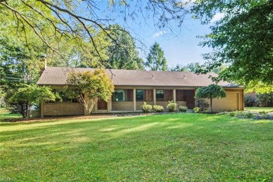 209 Moreland Dr, Canfield, OH 44406 - MLS#: 3978996