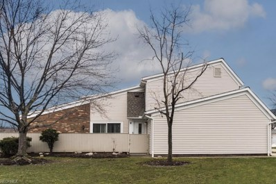 5561 Heathergreen Ct UNIT 24-D, Willoughby, OH 44094 - MLS#: 3979157