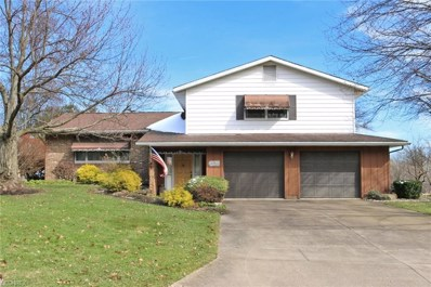 3217 Shelly Blvd, Wooster, OH 44691 - MLS#: 3979263