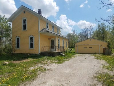 2682 E Water St, Rock Creek, OH 44084 - MLS#: 3979458