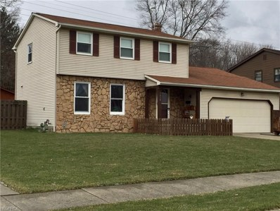 1828 Chapel Hill Dr, Youngstown, OH 44511 - MLS#: 3979522