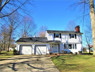 60 W Eighth St, Newton Falls, OH 44444 - MLS#: 3979702