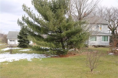 9588 Page Rd, Streetsboro, OH 44241 - MLS#: 3980112