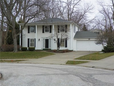 1011 Chatham Pl, Rocky River, OH 44116 - MLS#: 3980190