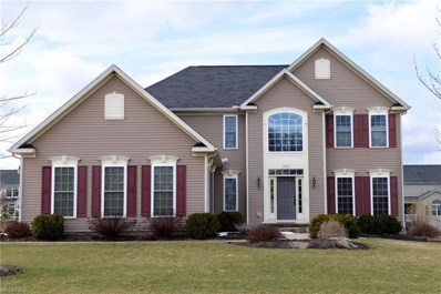 4279 Brownstone Ln, Medina, OH 44256 - MLS#: 3980191
