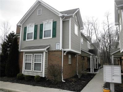 3406 Lenox Village Dr UNIT 244, Fairlawn, OH 44333 - MLS#: 3980370
