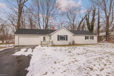 4769 State Route 82, Mantua, OH 44255 - MLS#: 3980404
