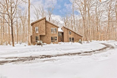 17138 Wood Acre Trl, Chagrin Falls, OH 44023 - MLS#: 3980609