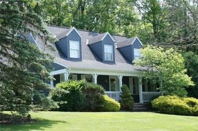 160 Senlac Hills Dr, Chagrin Falls, OH 44022 - MLS#: 3981138