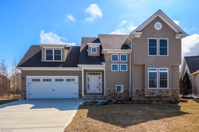 1510 Villa Grande Dr, Painesville Township, OH 44077 - MLS#: 3981252