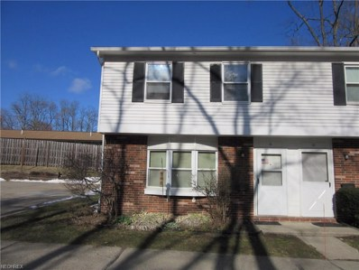 762 Mentor Ave UNIT 11, Painesville, OH 44077 - MLS#: 3981385