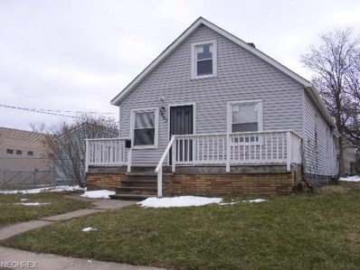3463 E 76th Street, Cleveland, OH 44127 - #: 3981868