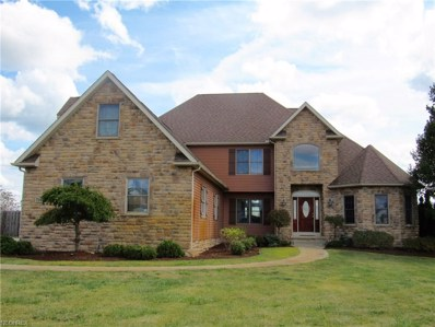7311 Grindle Rd, Wadsworth, OH 44281 - MLS#: 3981911