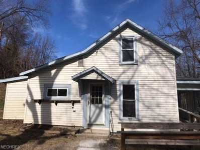 424 Park Hill Dr, Newcomerstown, OH 43832 - MLS#: 3981978