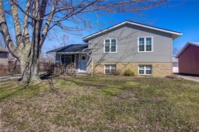 4251 Holl Ave, Sheffield Lake, OH 44054 - MLS#: 3983043