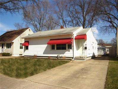 385 Olive St, Elyria, OH 44035 - MLS#: 3983075