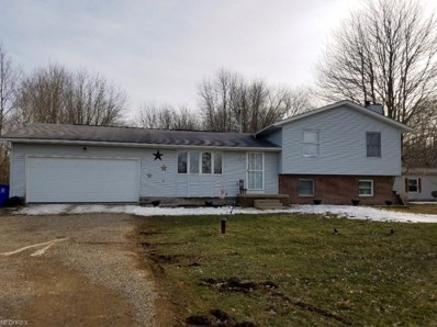 6168 State Route 82, Hiram, OH 44234 - MLS#: 3983568