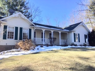 4970 River Rd, Perry, OH 44081 - MLS#: 3984145