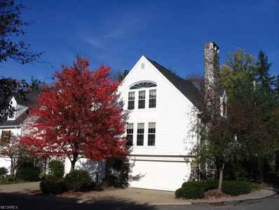 10 Commons Ct, Chagrin Falls, OH 44022 - MLS#: 3984171