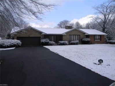 3560 5th Ave, Youngstown, OH 44505 - MLS#: 3984381