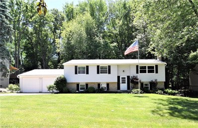 109 Forest Hill, Munroe Falls, OH 44262 - MLS#: 3984676
