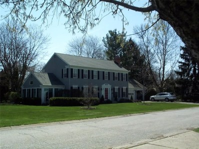 139 Sycamore St, Oberlin, OH 44074 - MLS#: 3985398