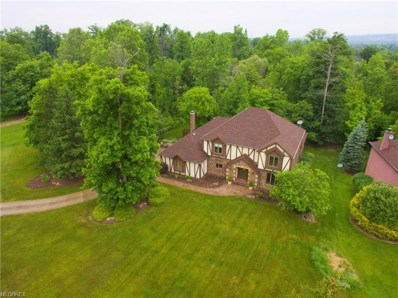 2293 Brook Haven Ln, Hinckley, OH 44233 - MLS#: 3985446