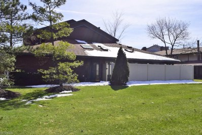 338 Thistle Trl UNIT 338, Mayfield Heights, OH 44124 - MLS#: 3985520