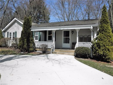 3813 Ira Rd, Akron, OH 44333 - MLS#: 3985609