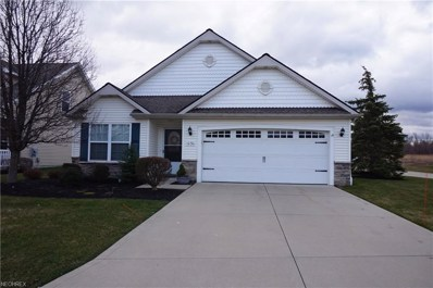 1030 Spring Run Blvd, Painesville, OH 44077 - MLS#: 3986547