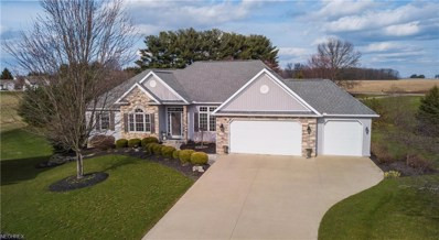 1602 Bent Tree Dr, Wooster, OH 44691 - MLS#: 3986651