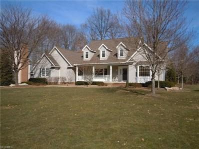1885 Brittainy Oaks, Warren, OH 44484 - MLS#: 3987691