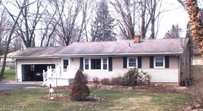 3245 McCleary Jacoby Rd, Cortland, OH 44410 - MLS#: 3987875