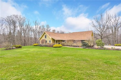 3450 Leffingwell Rd, Canfield, OH 44406 - MLS#: 3987894