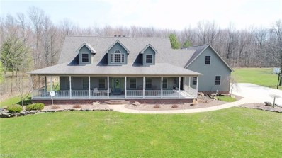 1187 S Turner Rd, Austintown, OH 44515 - MLS#: 3988486