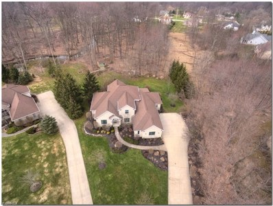 2902 Oakwood Dr, Willoughby Hills, OH 44094 - MLS#: 3988614