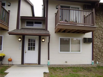 3695 Indian Run Dr UNIT 6, Canfield, OH 44406 - MLS#: 3988624