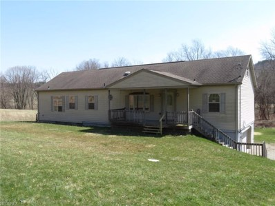 931 N College St, Newcomerstown, OH 43832 - MLS#: 3988627