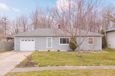 424 Buckeye Dr, Sheffield Lake, OH 44054 - MLS#: 3988642