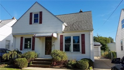 29924 Phillips Ave, Wickliffe, OH 44092 - MLS#: 3988678