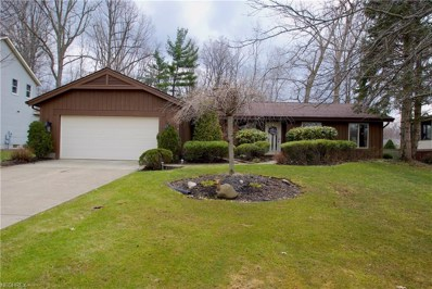 1262 Falling Rock Ln, Painesville, OH 44077 - MLS#: 3989168