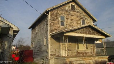 333 Chestnut St, Newcomerstown, OH 43832 - MLS#: 3989199