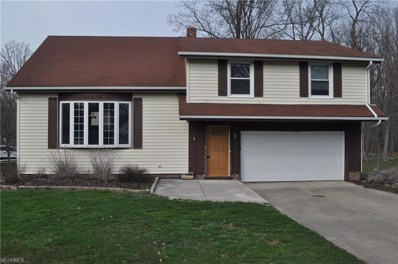 1223 Briardale Ct, Twinsburg, OH 44087 - MLS#: 3989247