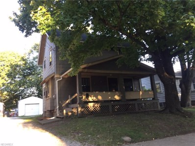 1233 Lily St, Akron, OH 44301 - MLS#: 3989259