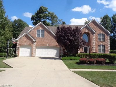 11669 Fox Grove, Strongsville, OH 44149 - MLS#: 3989579