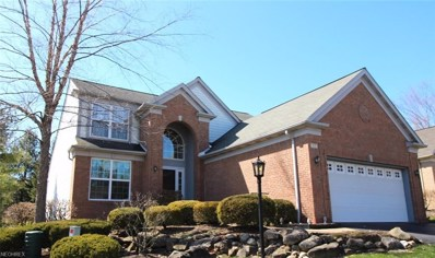 717 Sagewood Dr, Chagrin Falls, OH 44023 - MLS#: 3989732