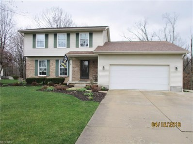 3675 Meander Reserve Cir, Canfield, OH 44406 - MLS#: 3989853
